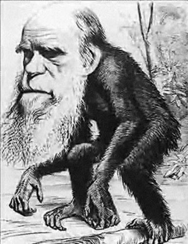 Darwin_.jpg