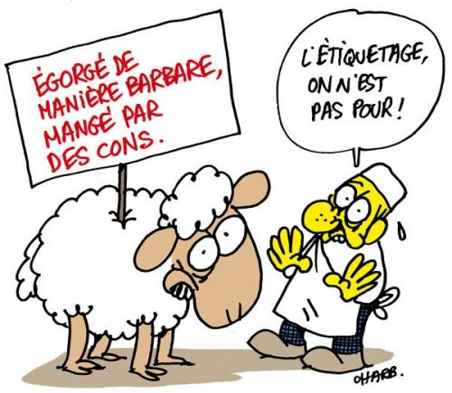 abattage rituel, Charb, Civilisation, maltraitance_des_animaux, religions