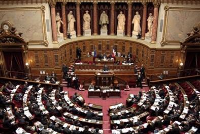 Burqa et le Senat02-476aa.jpg