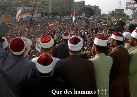 islam,musulmane,maroc,algérie,tunisie,égypte,chrétienté,science,athéisme,culture,journalistes,laïcité,fanatisme-religieux,religions,monothéismes, frères musulmans,salafistes,chiites,sunnites