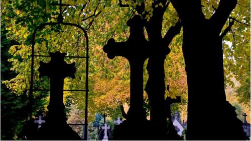 Mahomet, religion, carrés_musulmans,culture, islam, catacombes_de_Paris, cimetières, xénophobie, discriminations