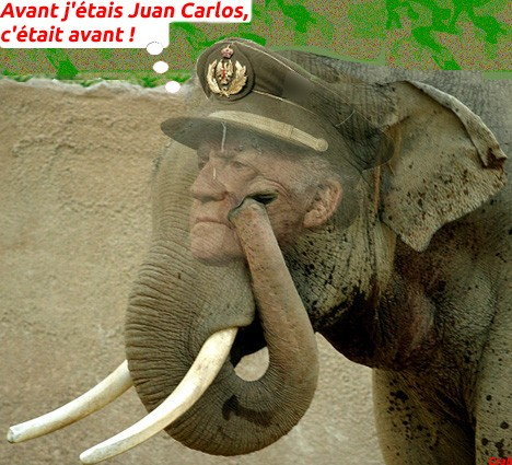 0 juan_carlos_d_espagne - elephant royal.jpg