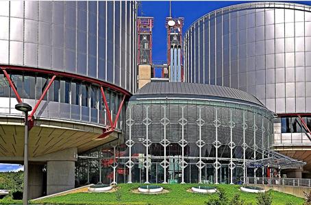 Cour européenne des droits de l'homme.png